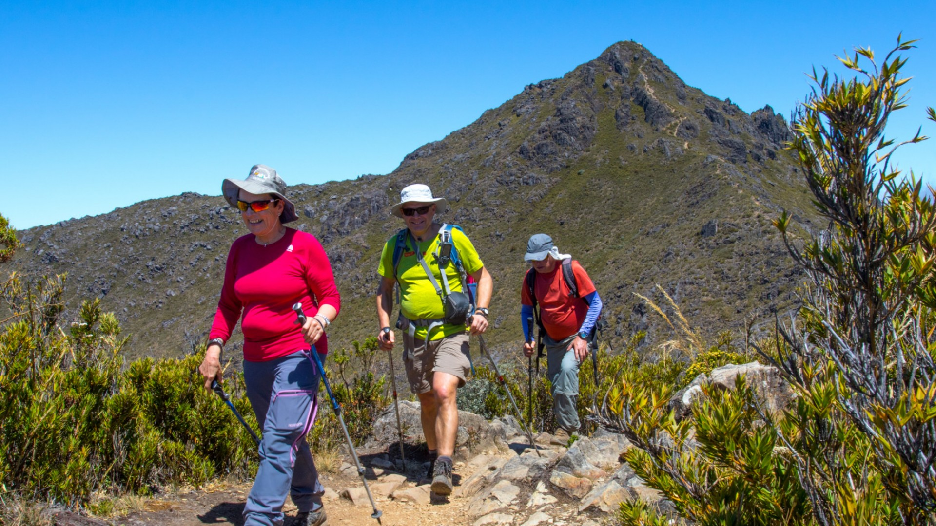 Hikers in Chirripó National Park