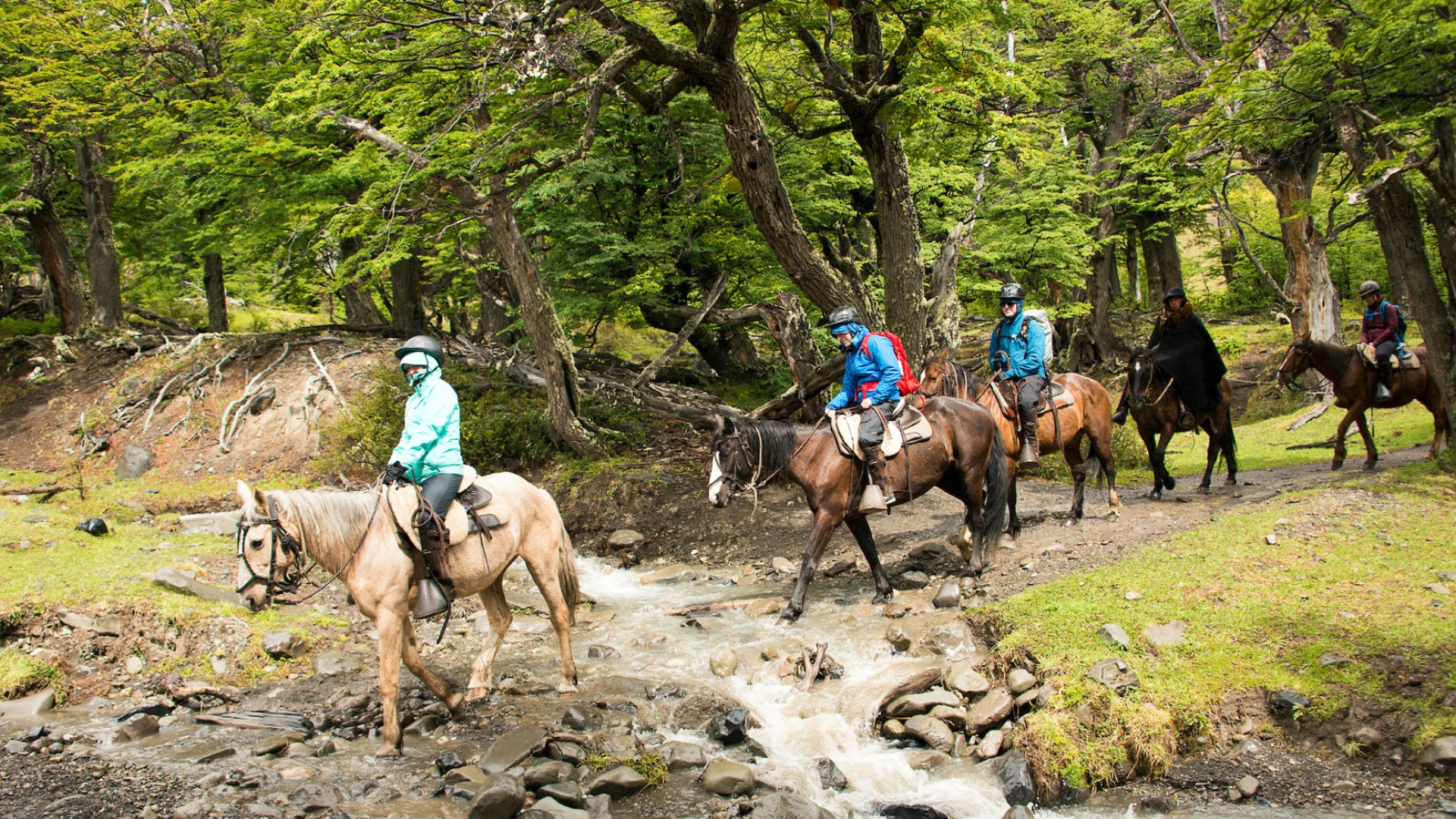 horseback riding in wilderness
