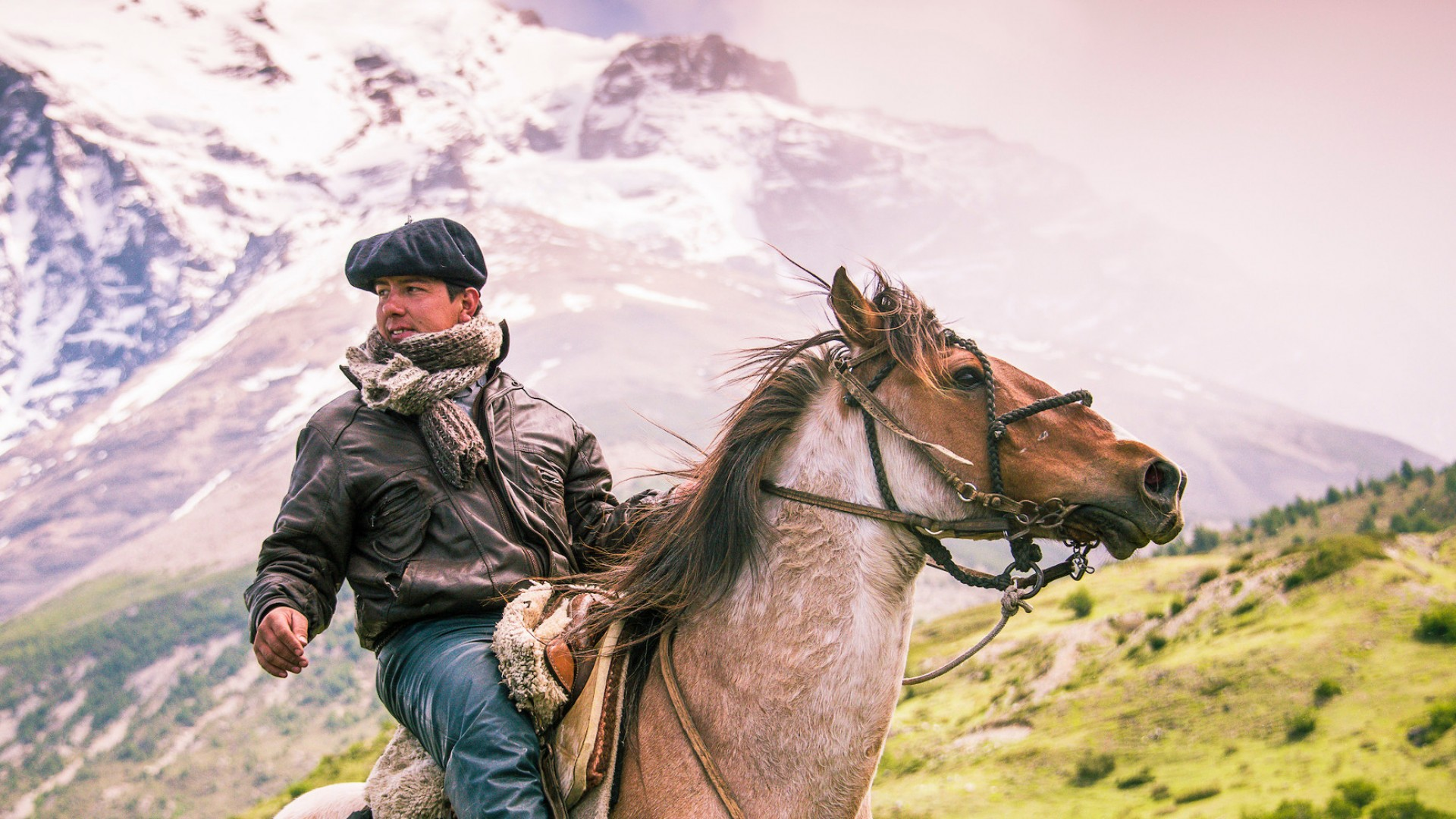 horse and rider in patagonia highlands