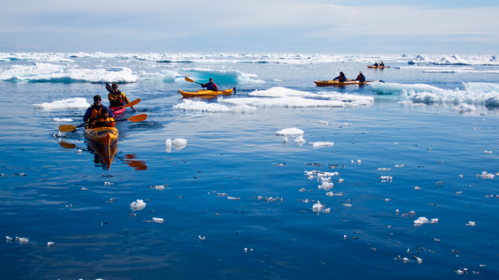 sea kayakers in the arctic