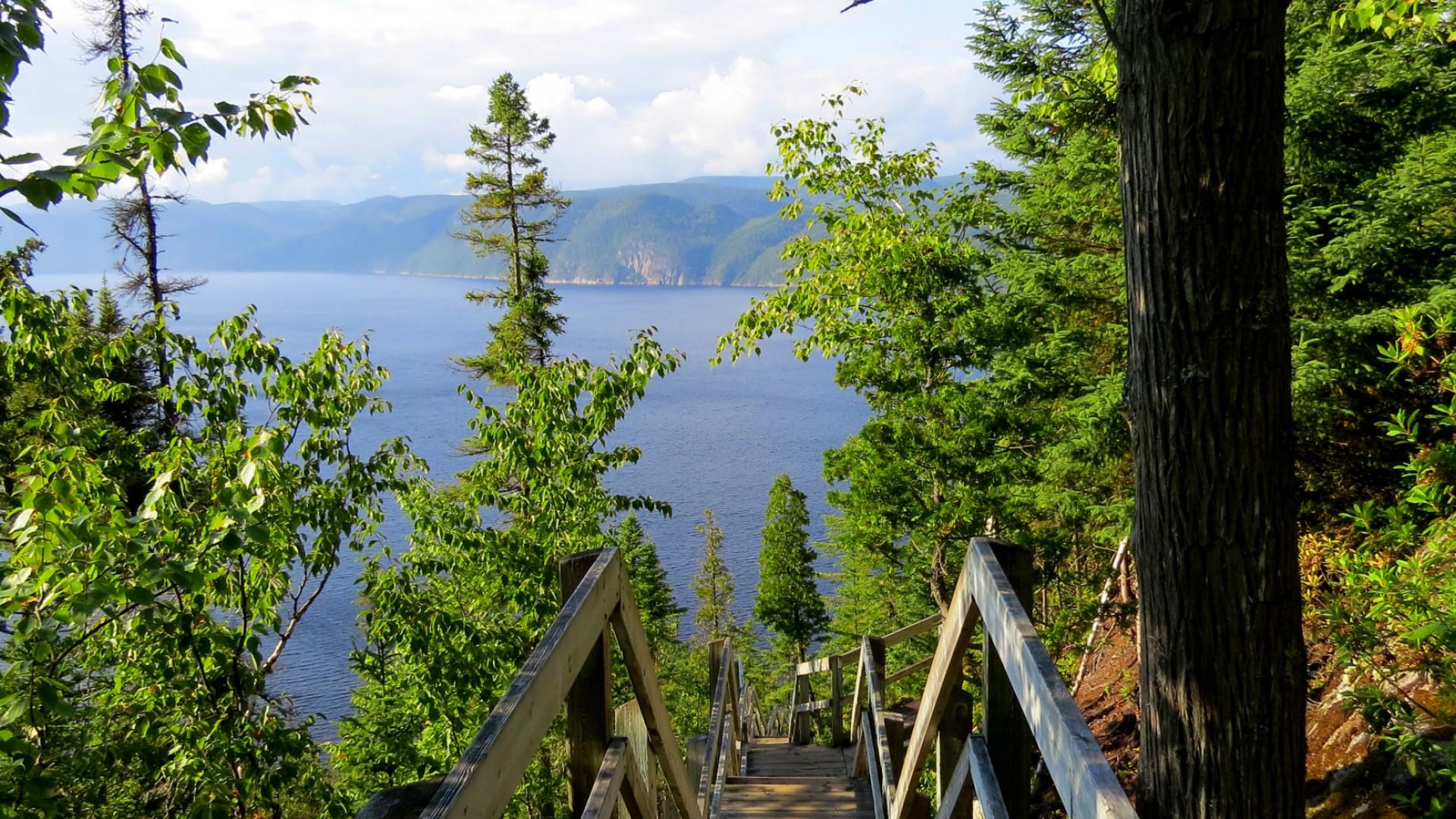 wooden stairway overlooking fjord