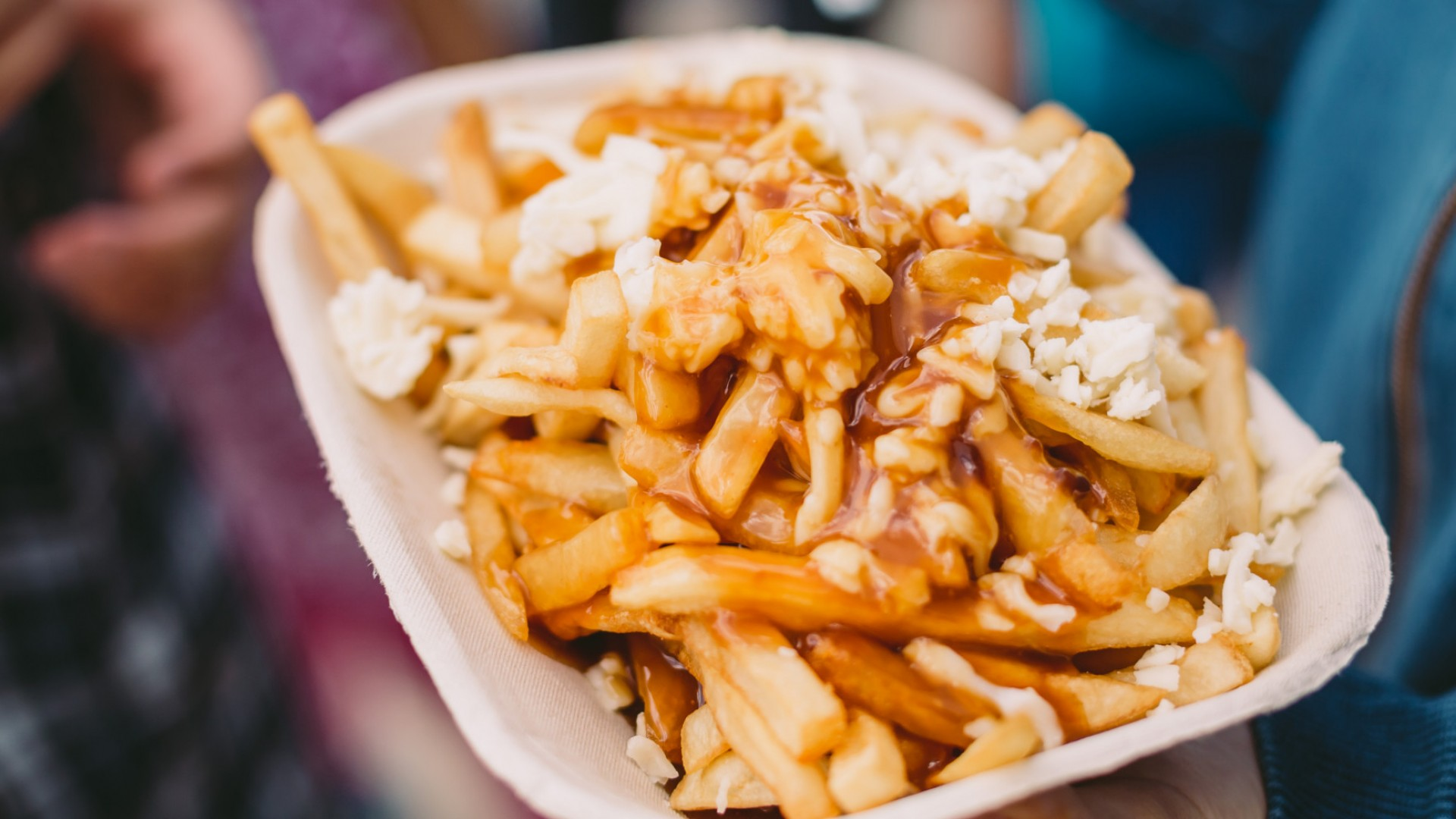 fries with cheese and gravy on top