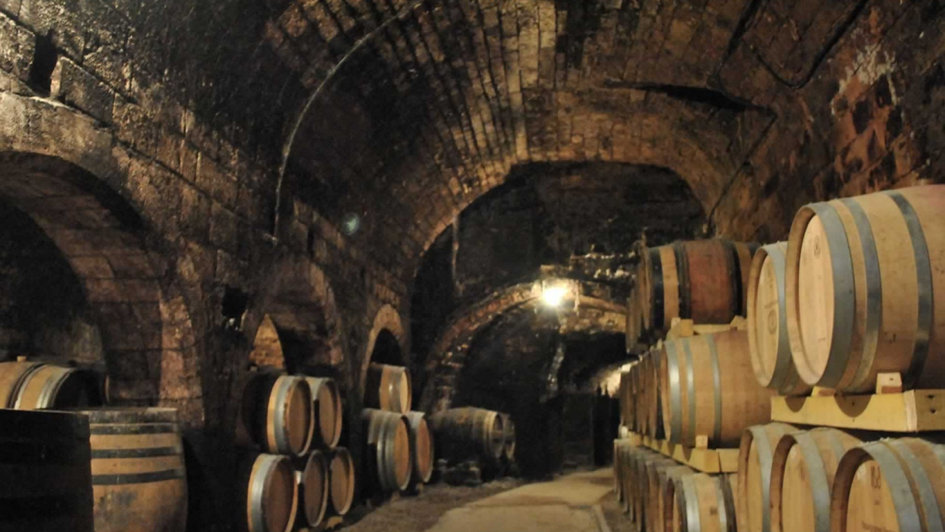 Wine tours france