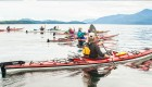 Group of paddlers on blackfish sound in BC