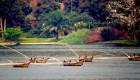 boats on Rwanda lake Kivu